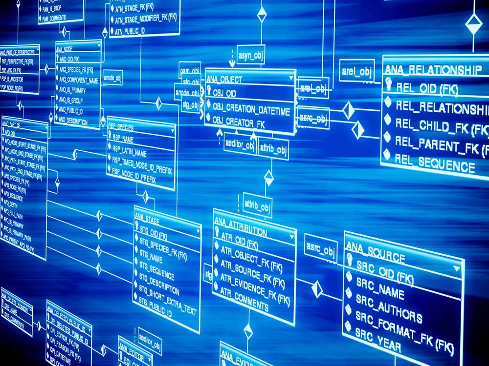 מה הם בסיסי נתונים ואיך מנהלים אותם?